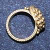 Prsten z VM