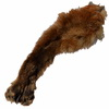 Noha červené lišky: II. jakost