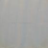 Vepřovice bílá 0,9 mm: 1 dcm2