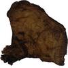 Troud z troudnatce: 11 g