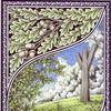 Plakát A4: Dřevěná runa života